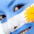 Argentinean flag portrait - Stock Photo