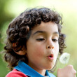 Stock Photo: Kid blowing dandelion