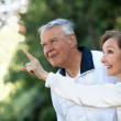 Retired couple looking up — Stock Photo
