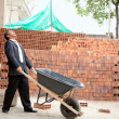 Engineer with wheelbarrow — Stock Photo #7752267