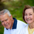 Stock Photo: Happy retired couple