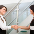 Business handshake — Foto Stock #7752409