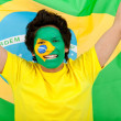 Brazilian flag portrait - Foto Stock
