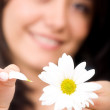 Stock Photo: Girl with daisy - loves me not