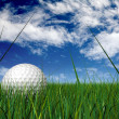 Gold ball on grass blades - Stock Photo