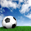 Football ball on green grass - soccer — Stock Photo