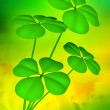 Lucky clovers illustration background - Stock Photo
