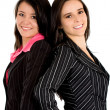 Beautiful young female business partners — Stock Photo