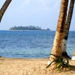 Beautiful caribbean beach — Stock Photo #7754423