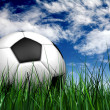 Football or soccer ball on the grass - Foto Stock
