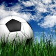 Football or soccer ball on the grass — ストック写真