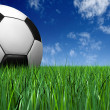 Soccer ball on the grass - football — Stock Photo