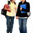Couple of students walking — Stock Photo