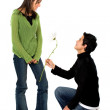 Casual man offering a flower to a girl - Lizenzfreies Foto