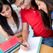 Stock Photo: Group of studying
