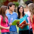 Group of students — Stock Photo #7756950