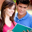 Stock Photo: Couple of students