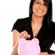 Stock Photo: Woman's savings