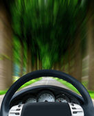 Steering wheel on forest highway — Stock Photo