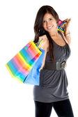Beautiful shopping woman — ストック写真
