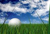Gold ball on grass blades — Stock Photo