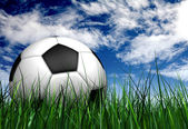 Football or soccer ball on the grass — Stock Photo