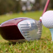 Stock Photo: Golf club with ball