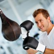 Male boxer - Stock Photo