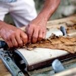Man making cigars — Stock Photo
