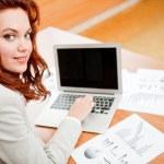 negócios online — Foto Stock