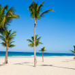 caribbean beach — Stock Photo #7764643