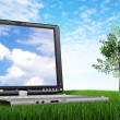 Laptop computer outdoors — Stock Photo