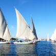 Regatta boats — Stockfoto