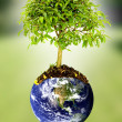 Royalty-Free Stock Photo: Save the planet