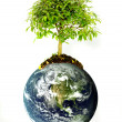 Royalty-Free Stock Photo: Protect the environment