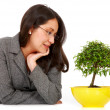 Foto Stock: Business woman hoping for growth