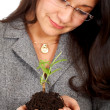 Business woman with a tree - Stock Photo