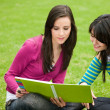 Foto Stock: Girls studying