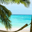 Beach paradise — Stock Photo