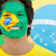 Brazilian flag portrait - 图库照片