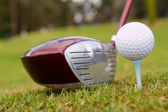 Golf club with a ball — Stock Photo
