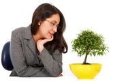 Business woman hoping for growth — Stock Photo