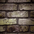 Brick wall — Stock Photo #7770996