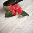 Special spa flower - Stock Photo