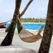 Hammock on the beach — Stock Photo #7771278