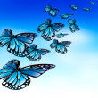 Royalty-Free Stock Photo: Butterflies flying