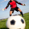 Football goalkeeper — Stock Photo #7772091