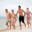 Friends at the beach — Stock Photo #7772107