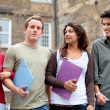 Group of students outdoors — Stock Photo #7772208