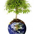 Stock Photo: Save planet